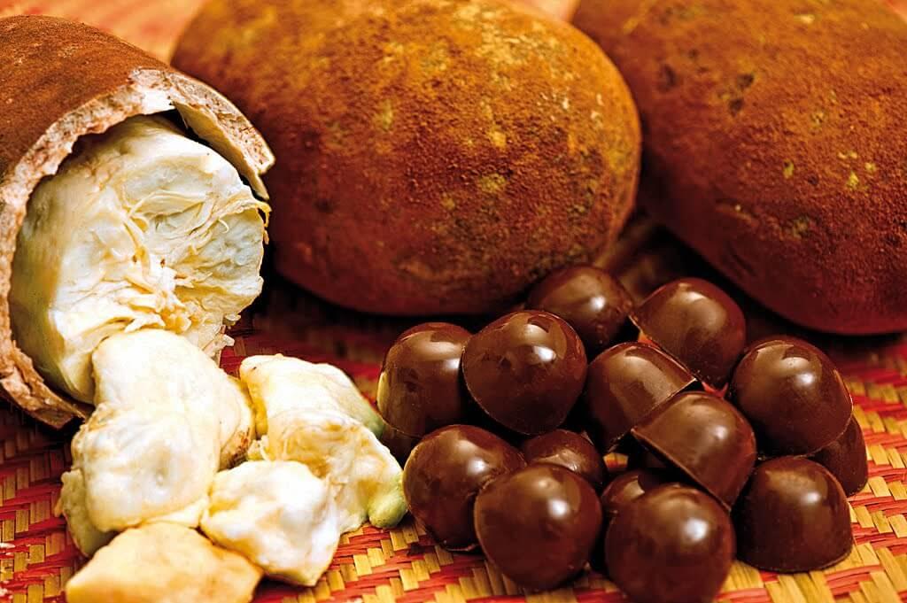Chocolates hechos en guatemala