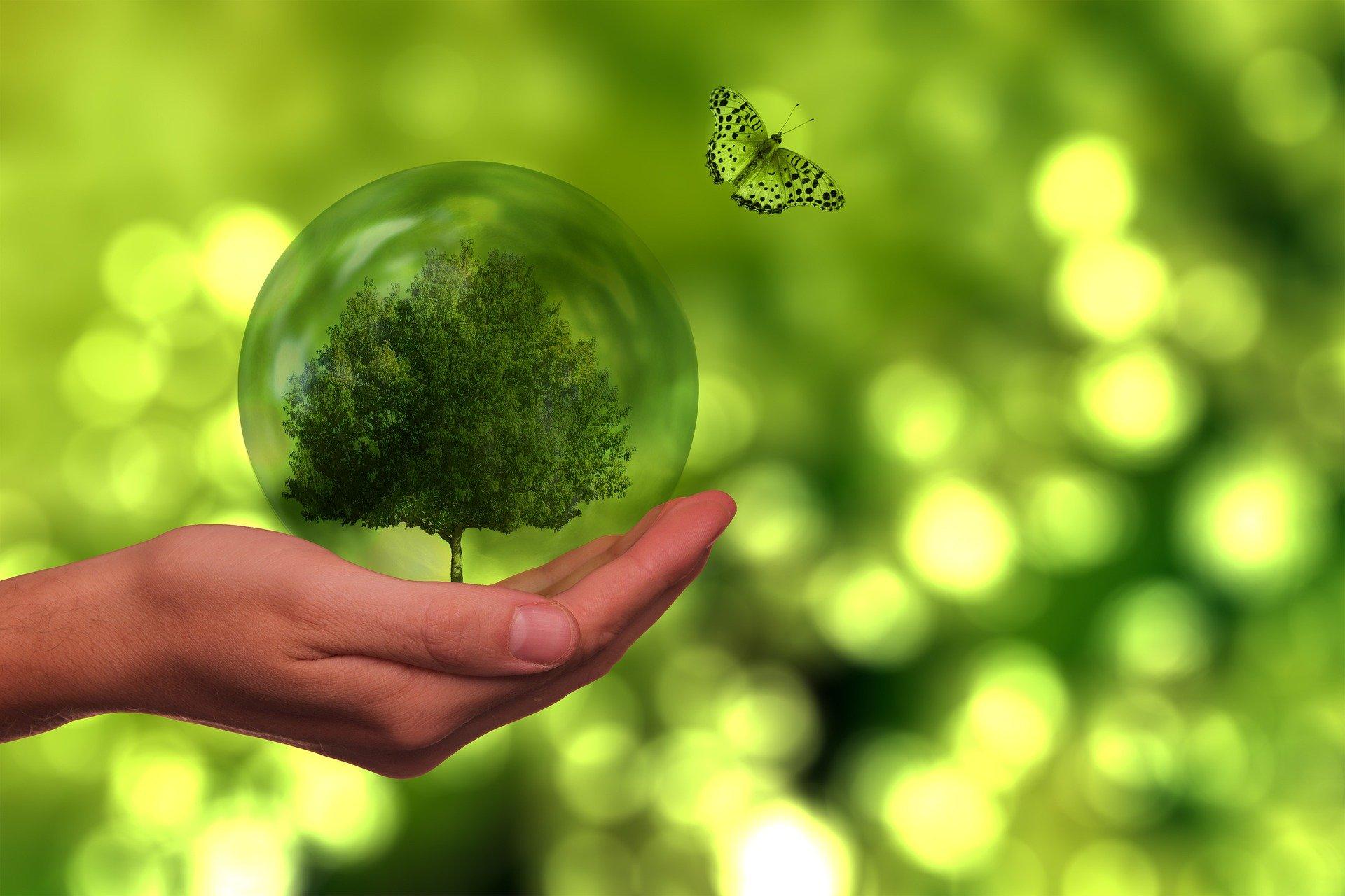beneficios de los bonos verdes