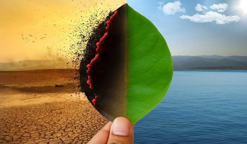 cambio climático y los bonos verdes